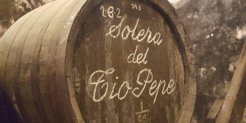 curso vinos andalucia