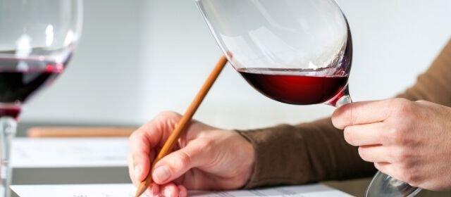 Cinco grandes diferencias entre el mercado del vino inglés y español 39648