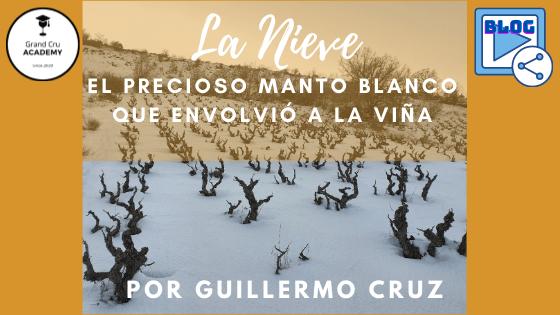 La Nieve: el precioso manto blanco que envolvió a la viña por guillermo cruz 1