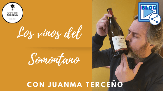 Vinos del Somontano Blog Juanma Terceno. Somontano