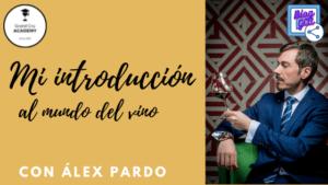 Blog GCA Blog Introduccion al mundo del vino