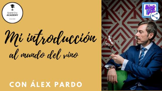MI INTRODUCCIÓN AL MUNDO DEL VINO Blog Introduccion al mundo del vino