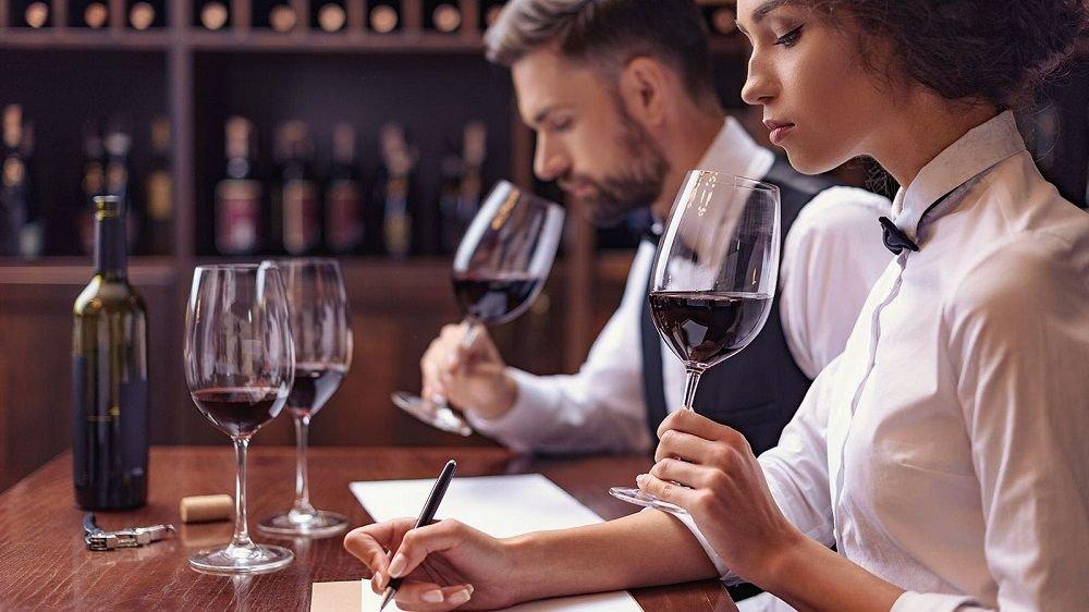 DIEZ CONSEJOS PARA ESTUDIAR SOBRE EL VINO realiza la cata de vino1